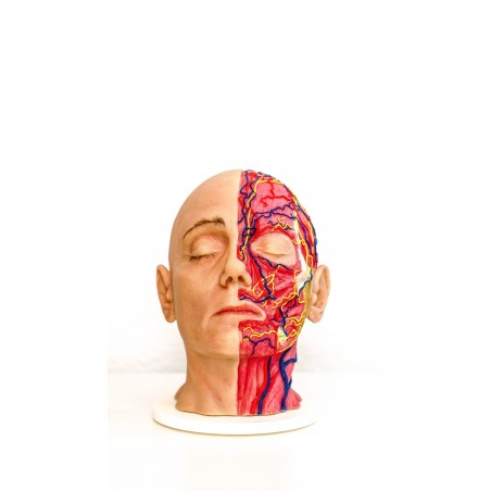 Facial Injection Mannequin 3